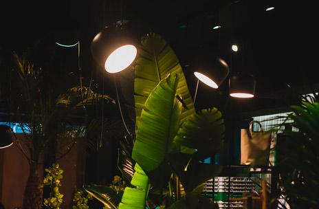 iluminación tienda yowe
